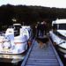 Hausboottour (62) Petersdorfer See