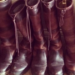 brown, footwear, shoe, leather, riding boot, boot,