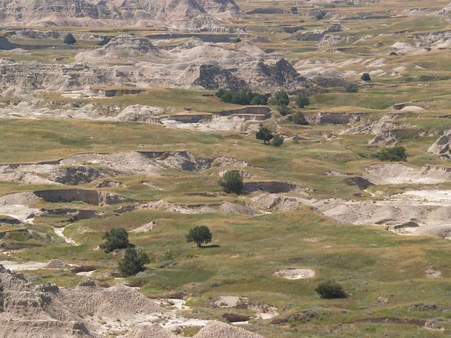 green in the Badlands