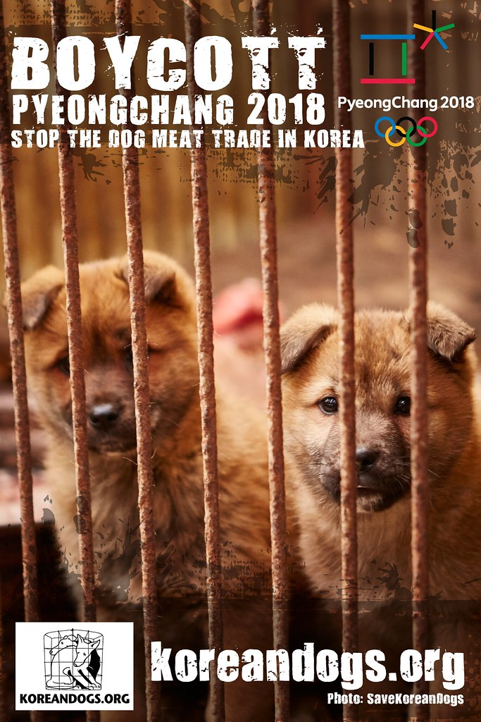 Boycott Pyeongchang_1440x2160_p