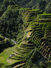 Rice terraces, Banaue by ydcheow87