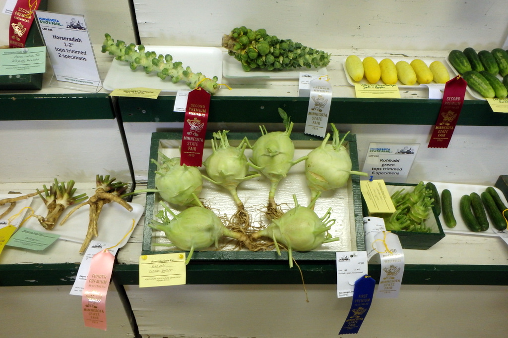 individual trays of kohlrabi, horseradish, cucumbers, and more