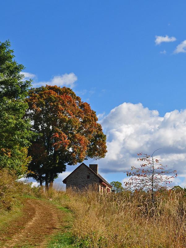 Meadow Garden - Webb Farmhouse
