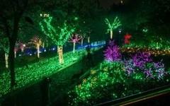 Festiva delle Luci...Lione si illumina per l'8 Dicembre!