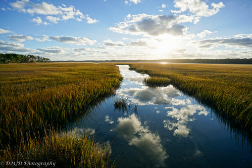 morning sky field clouds sunrise reflections landscape golden morninglight outdoor sony reads hour serene marsh assateague assateagueislandnationalseashore a6000