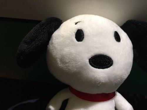 310 - Itty Bitty Snoopy