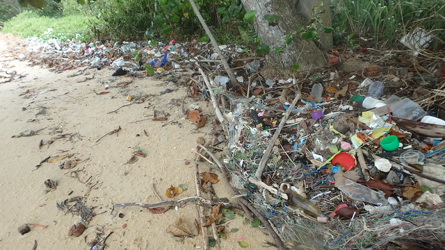 Trash on Pasir Ris shore