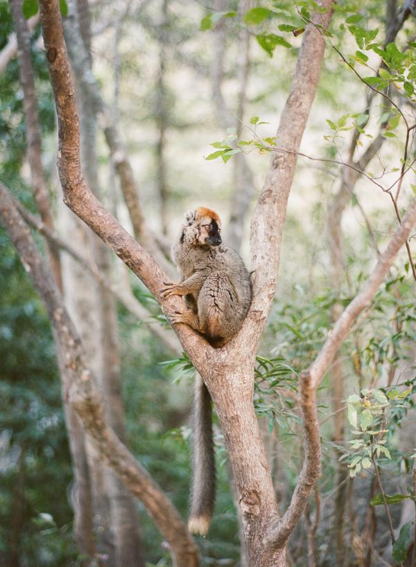 RYALE_Madagascar_Blog1_006