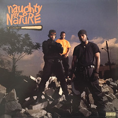 NAUGHTY BY NATURE:NAUGHTY BY NATURE(JACKET A)