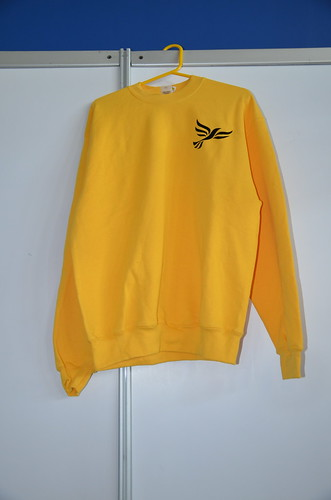 Lib Dem fashion items Sept 15 (8)