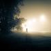 A Misty Figure | Day 95 / 365