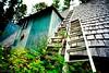 Treehouse by jamie.jones113