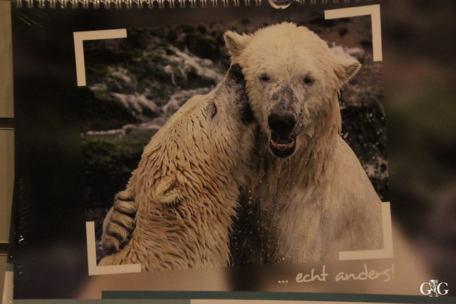 Besuch Winter Zoo Hannover 28.11.2015129