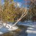 Shalda Creek 2