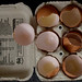 Small photo of Box of Eggshells