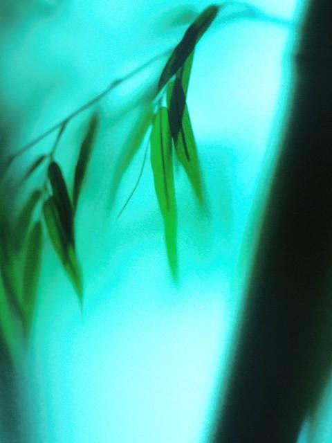 20030823_0416_Summilux-R80_RE_Ginza_Tokyo
