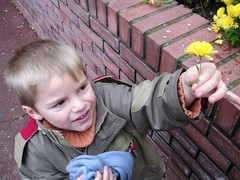 Flower for grandma