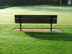 bench, furniture, grass, lawn,