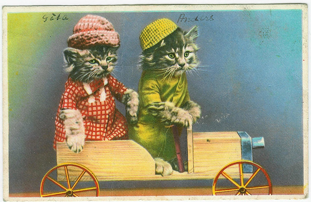 Vintage postcard of the kitten brothers