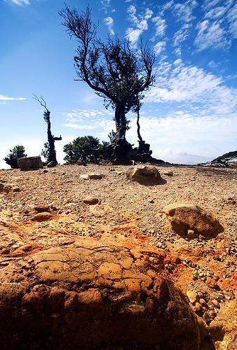 mars landscape volcano environment arid complimentarycolors