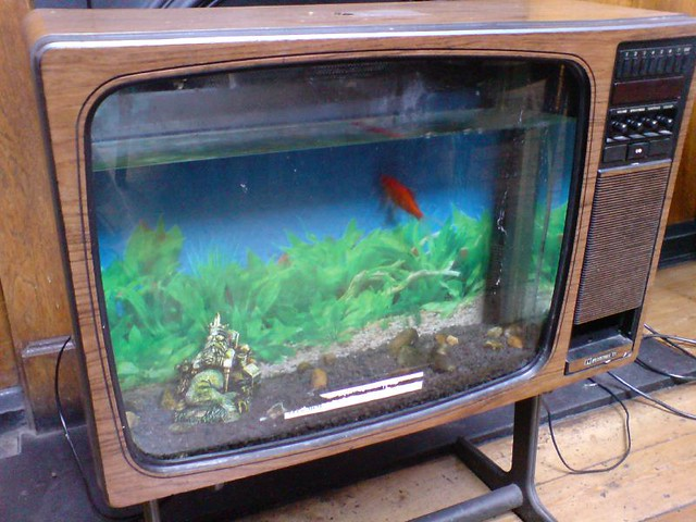 Photo - Pictures of cool fish tanks ...