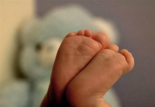 piedini di neonato in primo piano; sullo sfondo sfocato si vede un orsacchiotto azzurro.