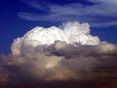 cumulus, cloud, daytime, sky,