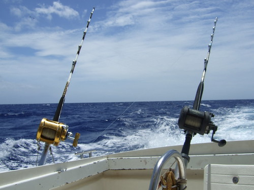 What to do during holidays in Mauritius - go on Big game fishing tours. Photo credit RichKnowles, on Flickr http://www.flickr.com/photos/canolais/