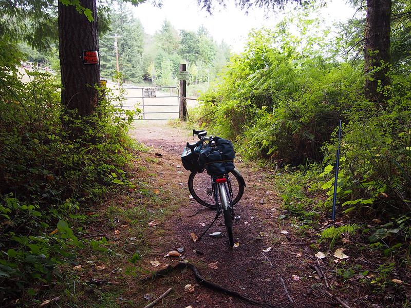 Secret Stub of the Snoqualmie Valley Trail: A little dirt path goes under NE Tokul Rd and follows the old railroad ROW to this point. There's no continuation from here, unfortunately.