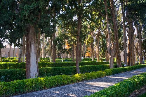 Fin garden
