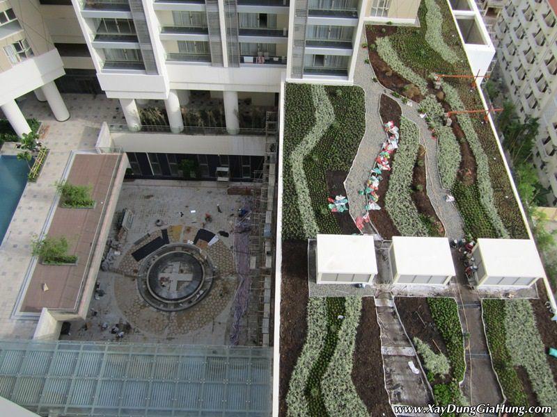 Giải pháp kỹ thuật thi công vườn trên mái với VersiCell
