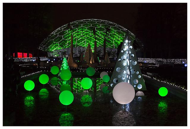 Garden Glow at MoBot 2015-11-20 14