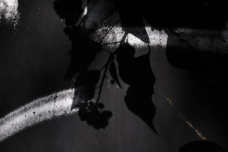 L'ombre aussi