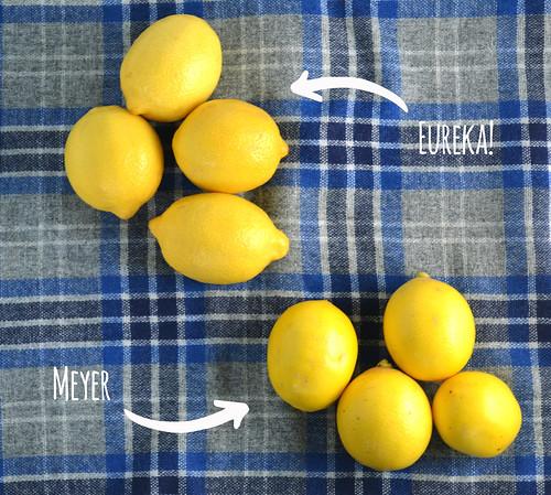尤里卡柠檬梅尔柠檬