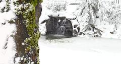 Snow Pond - Snowpocalypse 2017_41