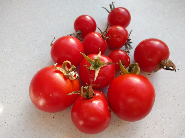 1 basket of cherry tomatoes