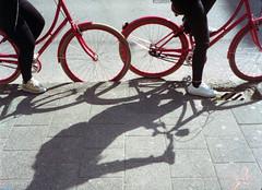 The Red Bike Ladies