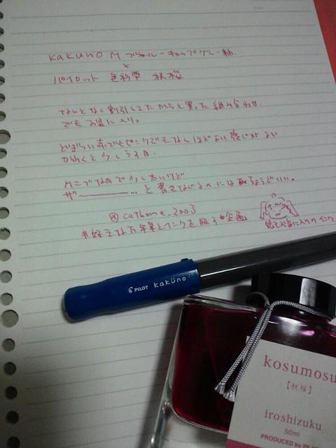 カクノと秋桜