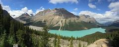 水, 2015-07-22 13:19 - Peyto Lake