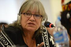 Situaci�n de defensoras y defensores  de derechos humanos de pueblos ind�genas y del ambiente en Ecuador