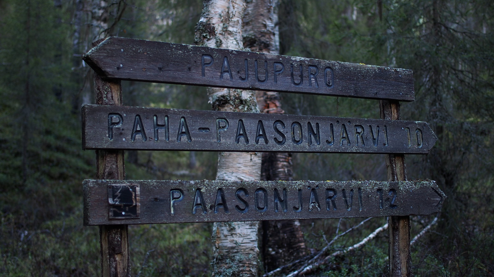 PA032194