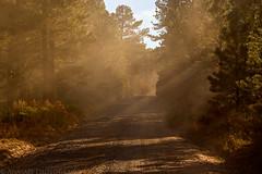 Divide Road (10-15-15)