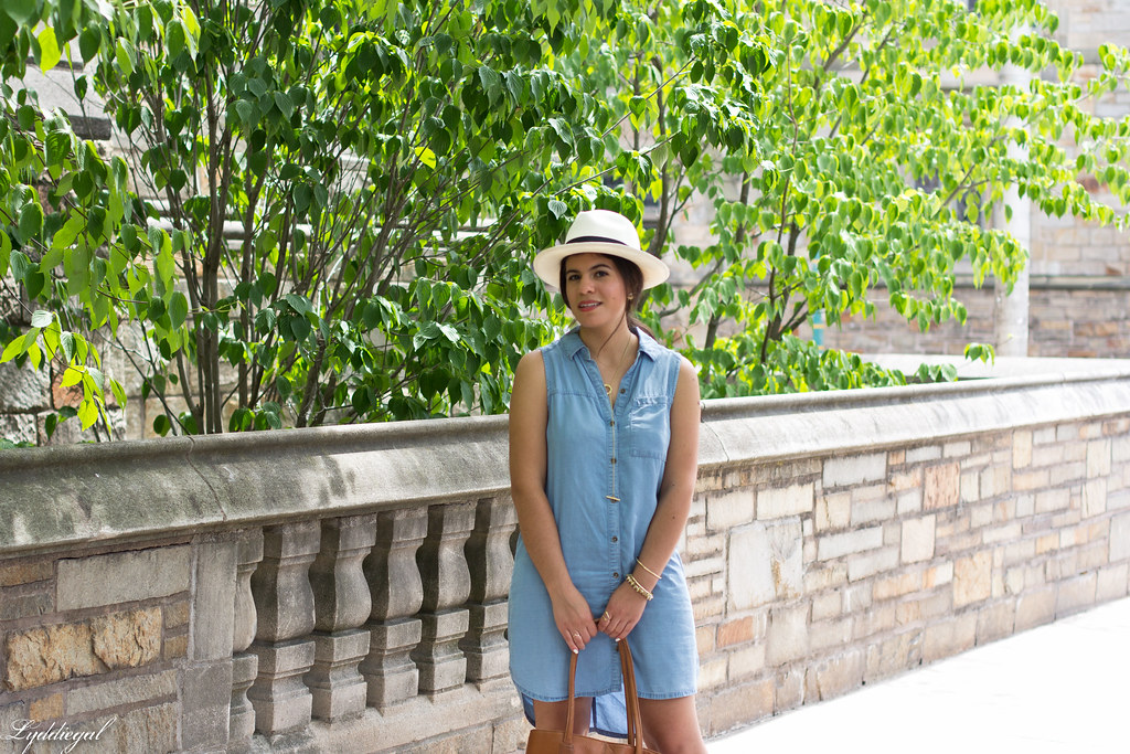 chambray dress, panama hat, leather tote-1.jpg