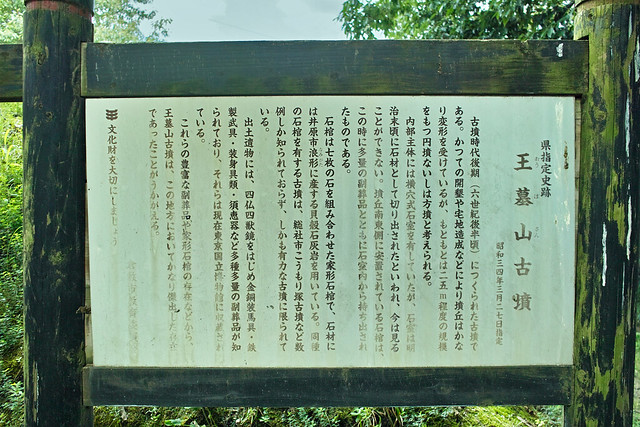 王墓山 #5
