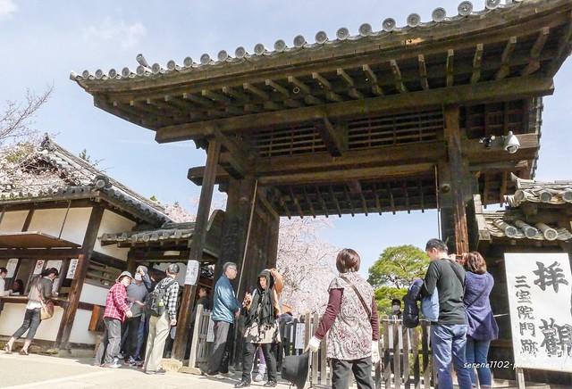 0402D8京都醍醐寺-1160262