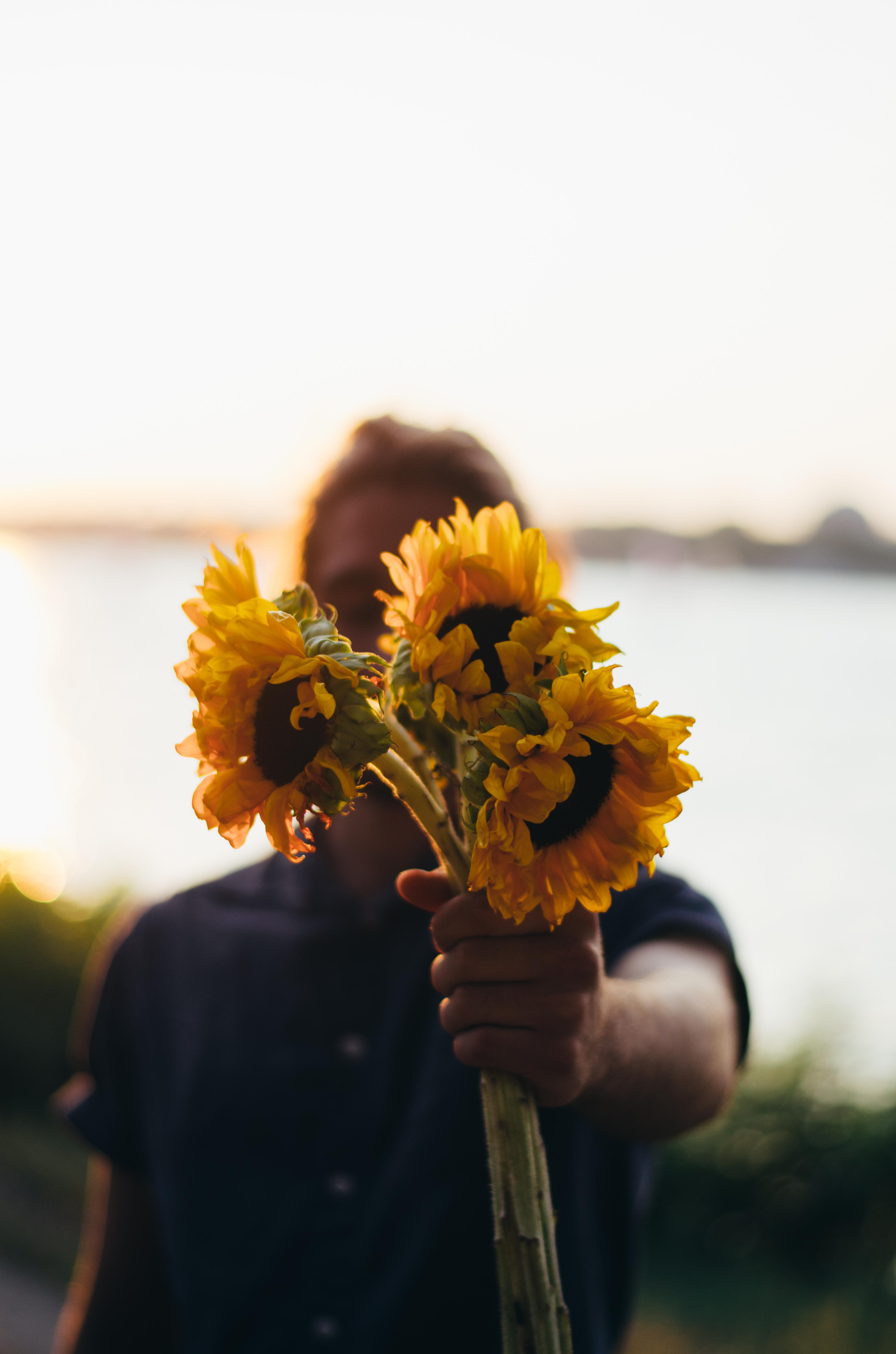 Sunflowers on juliettelaura.blogspot.com