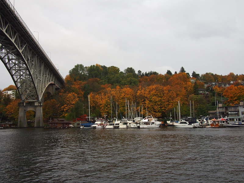 Ship Canal: Fall Colors