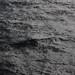 Seemannsbraut ist die See by feldweg
