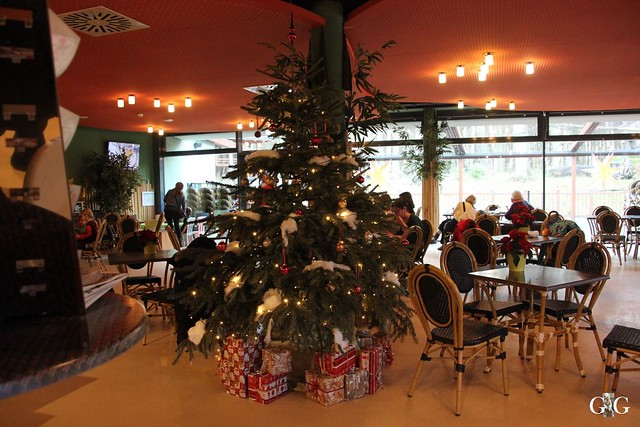 Besuch Zoo Rostock 13.12.201593