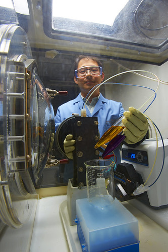Researcher with Test Battery